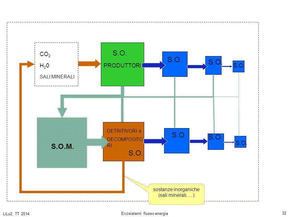 LiLu2, TT 2014 Ecosistemi: flusso energia 32 PRODUTTORI DETRITIVORI e DECOMPOSITO RI CO 2 H20H20 SALI MINERALI S.O.