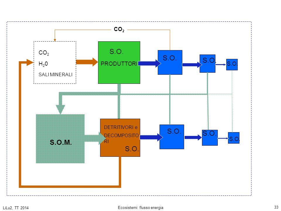 LiLu2, TT 2014 Ecosistemi: flusso energia 33 PRODUTTORI DETRITIVORI e DECOMPOSITO RI CO 2 H20H20 SALI MINERALI S.O.