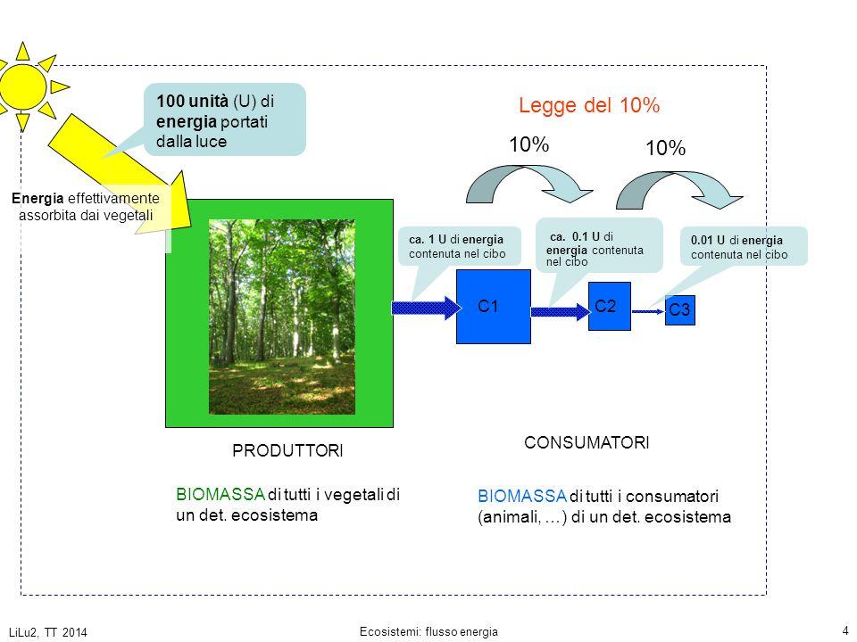LiLu2, TT 2014 Ecosistemi: flusso energia 5 Energia effettivamente assorbita dai vegetali 100 unità (U) di energia portati dalla luce ca.