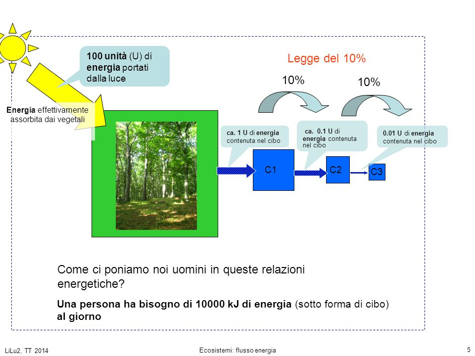 LiLu2, TT 2014 Ecosistemi: flusso energia 6 10 8 kJ/d 10 6 kJ di energia/d contenuta nel cibo C1 Una persona ha bisogno (mediamente) di 10'000 kJ di energia al giorno popolazione di 100 persone che si nutre esclusivamente di vegetali che coltiva su una det.