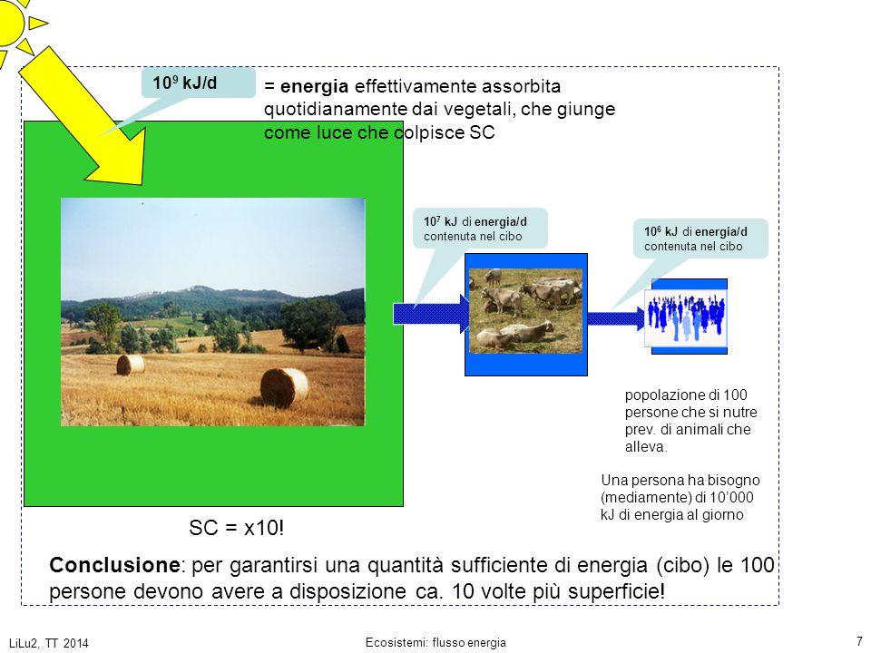 LiLu2, TT 2014 Ecosistemi: flusso energia 18 La quantità media di energia che una mucca può immagazzinare sotto forma di nuovi tessuti (carne) da 1 m 2 di erba in un giorno 14.5 kJ di nuova biomassa max.