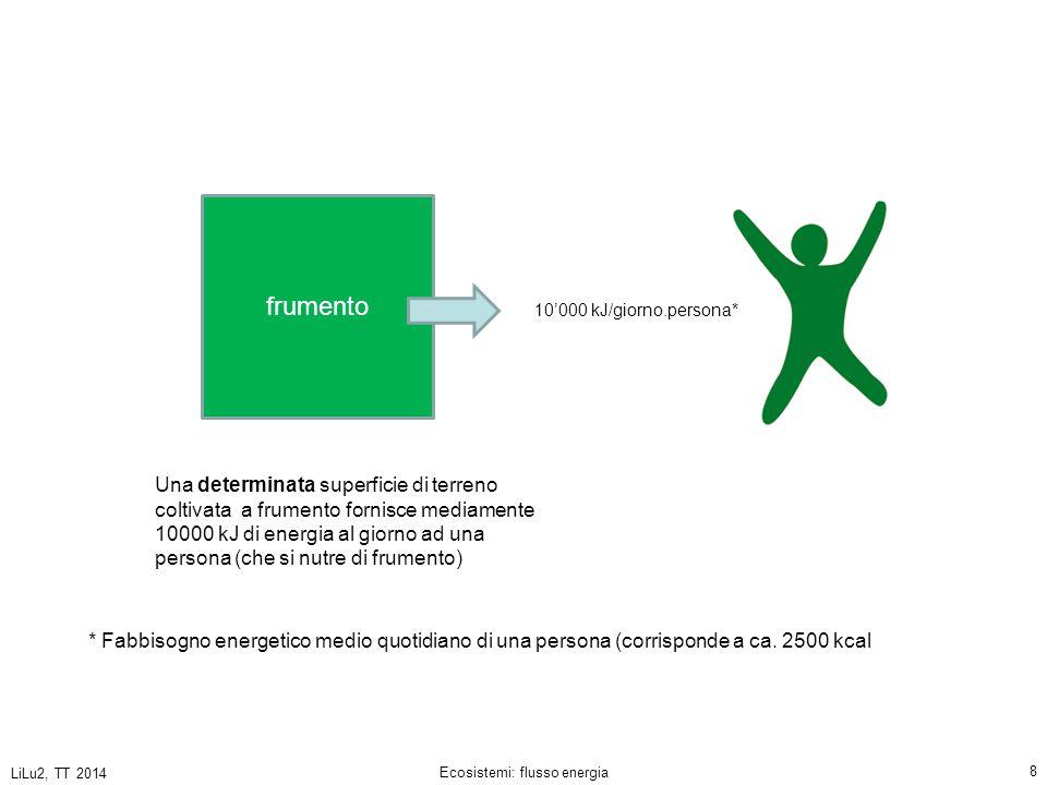 LiLu2, TT 2014 Ecosistemi: flusso energia 9 10'000 kJ/giorno.persona frumento .
