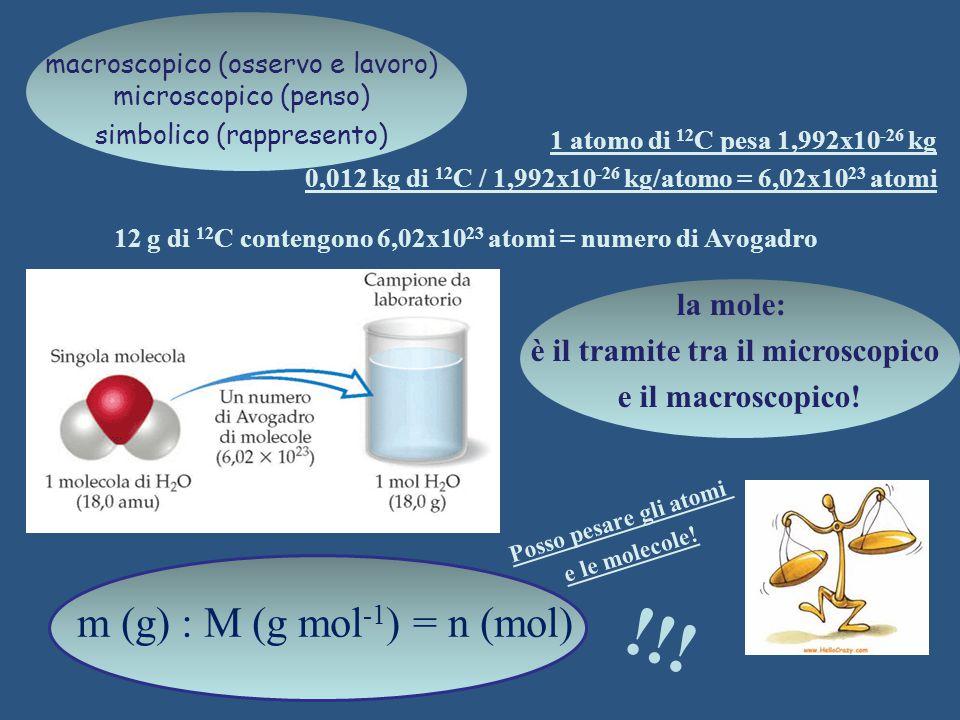 Posso pesare gli atomi e le molecole! m (g) : M (g mol -1 ) = n (mol) 1 atomo di 12 C pesa 1,992x10 -26 kg 0,012 kg di 12 C / 1,992x10 -26 kg/atomo =