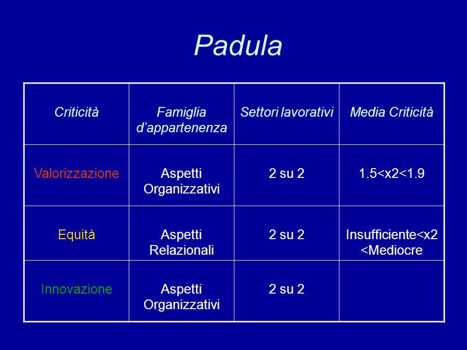 Padula CriticitàFamiglia d'appartenenza Settori lavorativiMedia Criticità ValorizzazioneAspetti Organizzativi 2 su 21.5<x2<1.9 EquitàAspetti Relaziona