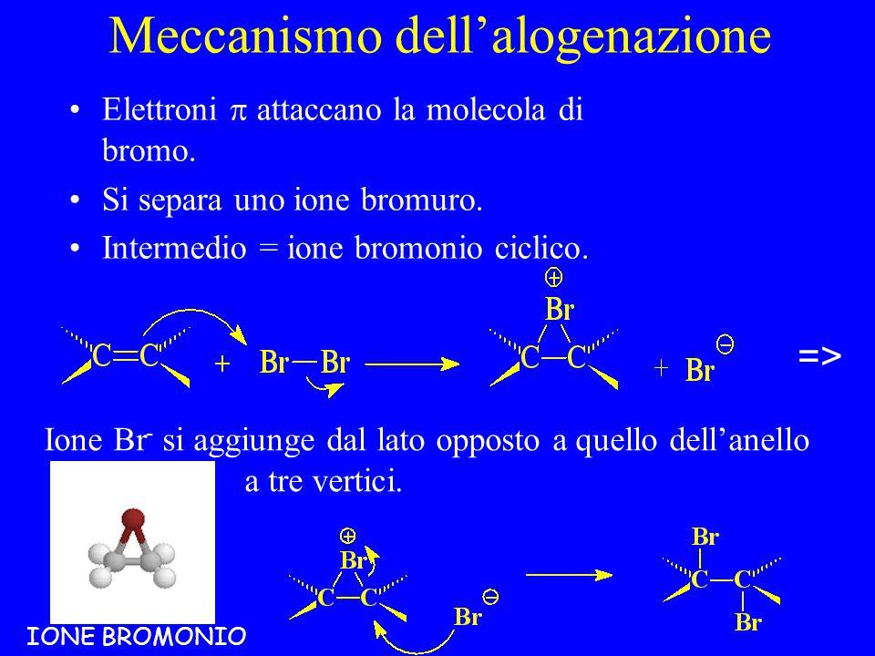Meccanismo dell'alogenazione Elettroni  attaccano la molecola di bromo.