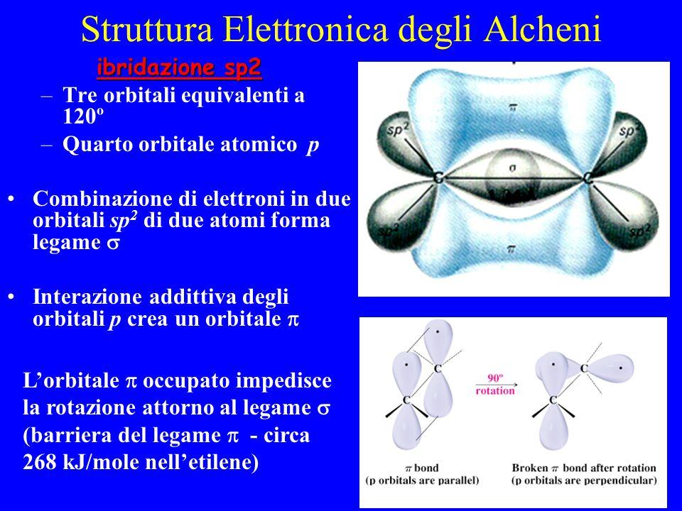 Struttura Elettronica degli Alcheni ibridazione sp2 ibridazione sp2 –Tre orbitali equivalenti a 120º –Quarto orbitale atomico p Combinazione di elettroni in due orbitali sp 2 di due atomi forma legame  Interazione addittiva degli orbitali p crea un orbitale  L'orbitale  occupato impedisce la rotazione attorno al legame  (barriera del legame  - circa 268 kJ/mole nell'etilene)