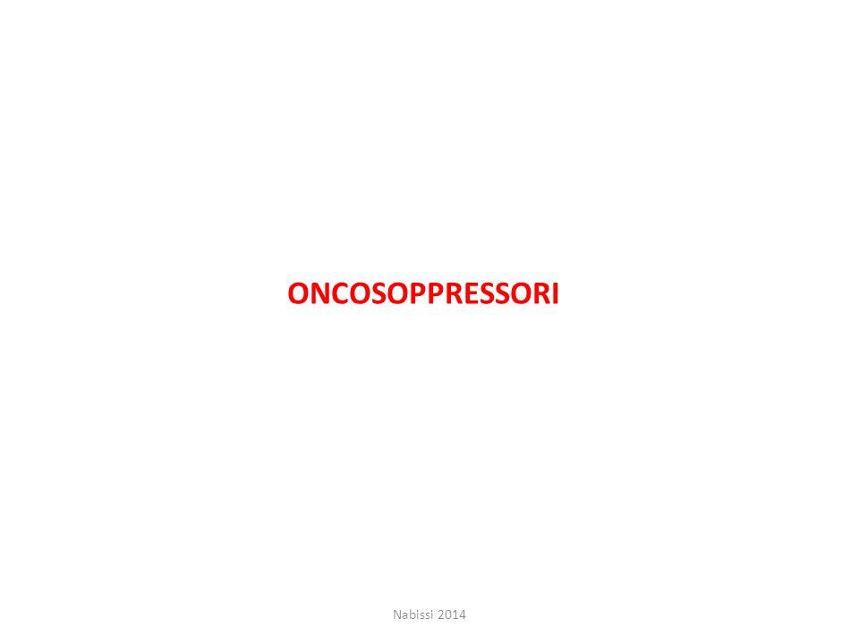 ONCOSOPPRESSORI Nabissi 2014