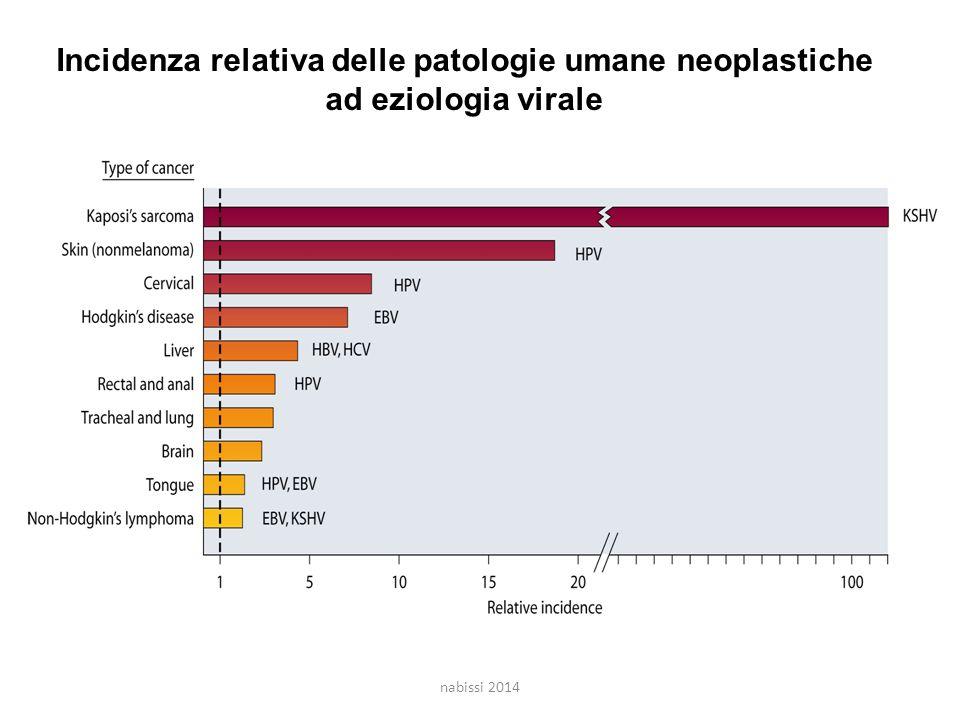 Incidenza relativa delle patologie umane neoplastiche ad eziologia virale