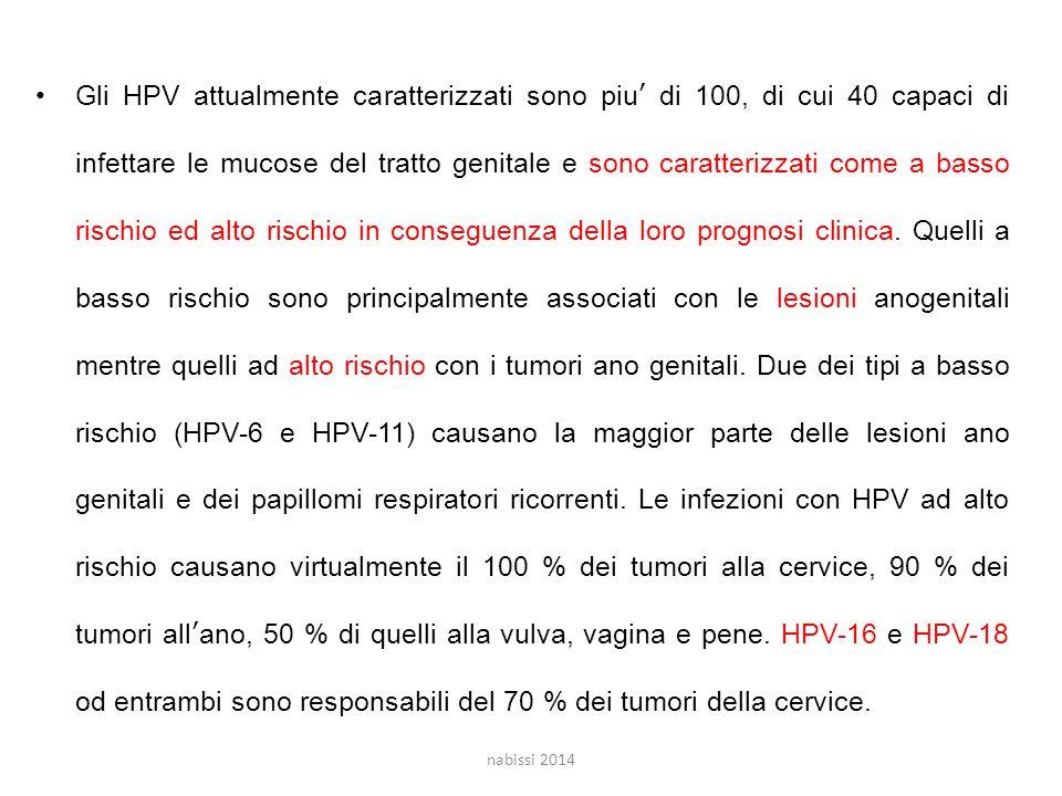 Gli HPV attualmente caratterizzati sono piu' di 100, di cui 40 capaci di infettare le mucose del tratto genitale e sono caratterizzati come a basso rischio ed alto rischio in conseguenza della loro prognosi clinica.