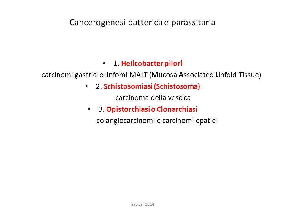 Cancerogenesi batterica e parassitaria 1.