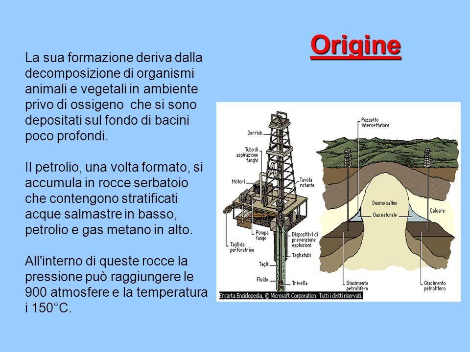 Origine La sua formazione deriva dalla decomposizione di organismi animali e vegetali in ambiente privo di ossigeno che si sono depositati sul fondo d