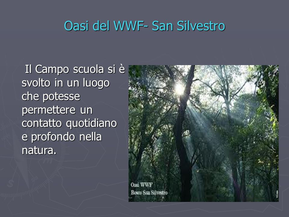Oasi del WWF- San Silvestro Il Campo scuola si è svolto in un luogo che potesse permettere un contatto quotidiano e profondo nella natura. Il Campo sc