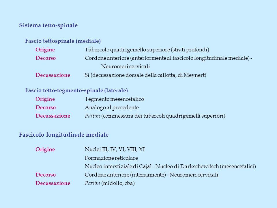 Sistema tetto-spinale Fascio tettospinale (mediale) Origine Tubercolo quadrigemello superiore (strati profondi) Decorso Cordone anteriore (anteriormente al fascicolo longitudinale mediale) - Neuromeri cervicali Decussazione Sì (decussazione dorsale della callotta, di Meynert) Fascio tetto-tegmento-spinale (laterale) Origine Tegmento mesencefalico Decorso Analogo al precedente Decussazione Partim (commessura dei tubercoli quadrigemelli superiori) Fascicolo longitudinale mediale Origine Nuclei III, IV, VI, VIII, XI Formazione reticolare Nucleo interstiziale di Cajal - Nucleo di Darkschewitsch (mesencefalici) Decorso Cordone anteriore (internamente) - Neuromeri cervicali Decussazione Partim (midollo, cba)