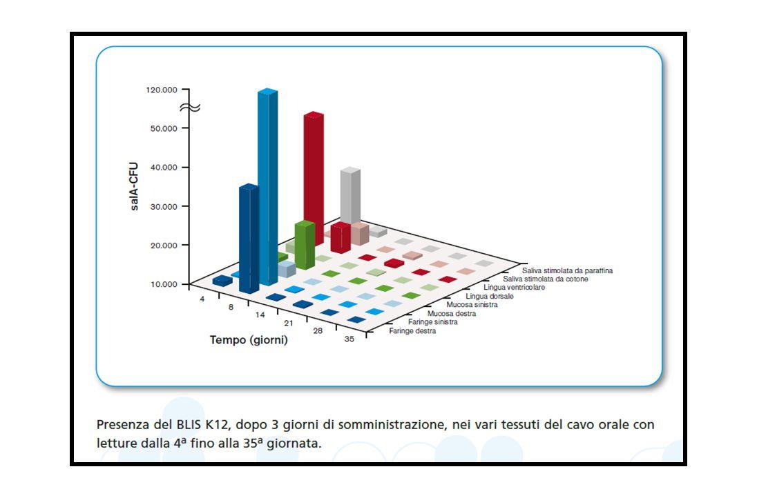 Le salivaricine A2 e B prodotte dal K12 si rilevano infatti nel cavo orale dei bambini trattati e colonizzati fino a 32 giorni dopo l'ultima somministrazione del ceppo dimostrando un importante potenziale ruolo terapeutico.