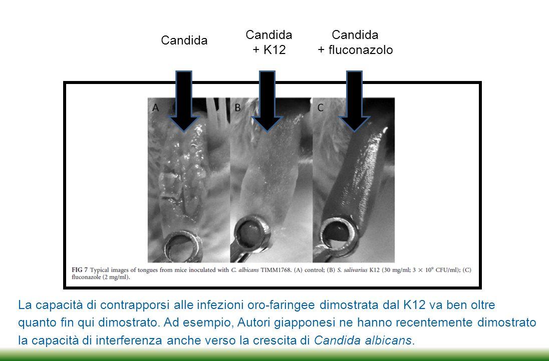 Faringo-tonsilliti (GAS) Salivaricine A2 e B Otiti medie acute Salivaricine A2 e B Alitosi Salivaricina A2 Candidosi orale Azione anti-ife Gengiviti e SAR IL-8 Faringo-tonsillite virale gamma-IFN In base ai trial svolti fino ad oggi tra gli USA, l'Italia, il Giappone, l'Australia e la Nuova Zelanda, oggi sappiamo cosa il ceppo K12 può prevenire e il relativo perché molecolare.