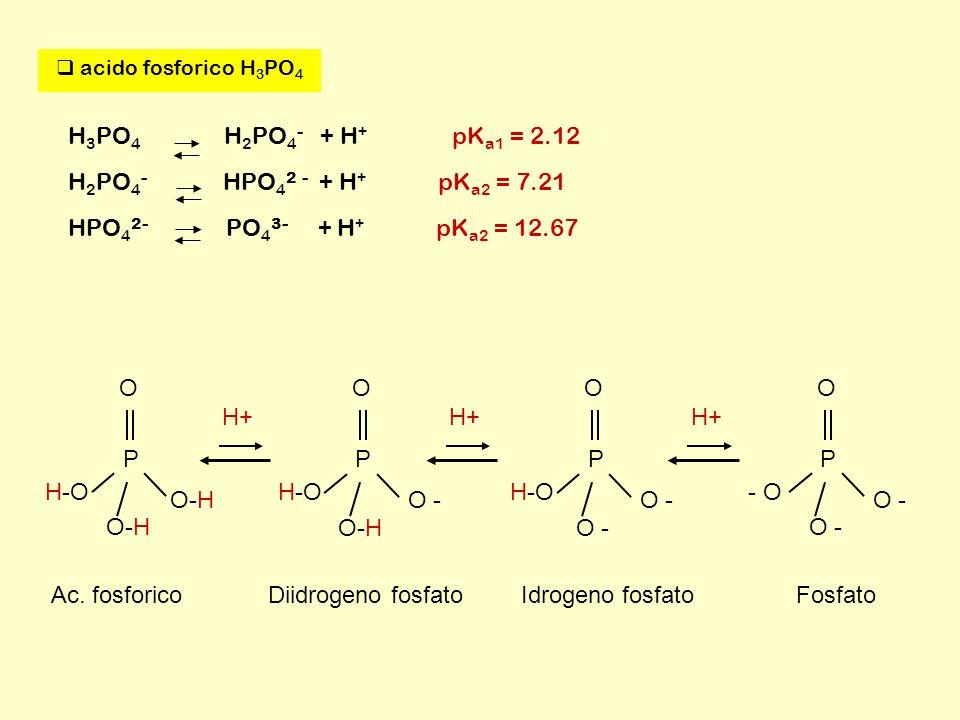  acido fosforico H 3 PO 4 H 3 PO 4 H 2 PO 4 - + H + pK a1 = 2.12 H 2 PO 4 - HPO 4 2 - + H + pK a2 = 7.21 HPO 4 2- PO 4 3- + H + pK a2 = 12.67 P O O-H