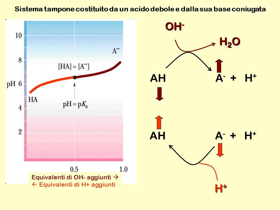 AH A - + H + H+H+H+H+ OH - Equivalenti di OH- aggiunti   Equivalenti di H+ aggiunti H2OH2OH2OH2O Sistema tampone costituito da un acido debole e dalla sua base coniugata AH A - + H +