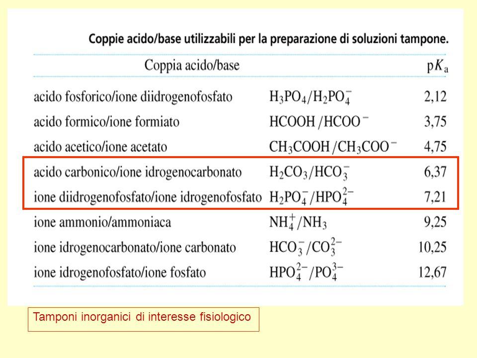 Tamponi inorganici di interesse fisiologico