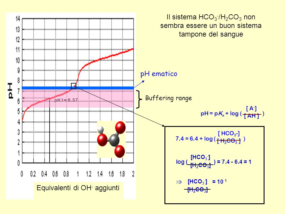 pK1= 6.37 Equivalenti di OH - aggiunti Buffering range pH ematico pH = pK a + log ( ) [ A - ] [ AH ] 7.4 = 6.4 + log ( ) [ HCO 3 -] [ H 2 CO 3 ] log (