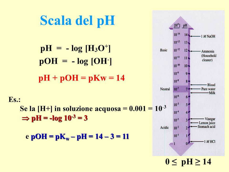 Scala del pH pH = - log [H 3 O + ] pOH = - log [OH - ] pH + pOH = pKw = 14 0 ≤ pH ≥ 14 Es.: Se la [H+] in soluzione acquosa = 0.001 = 10 -3  pH = -log 10 -3 = 3 pOH = pK w – pH = 14 – 3 = 11 e pOH = pK w – pH = 14 – 3 = 11