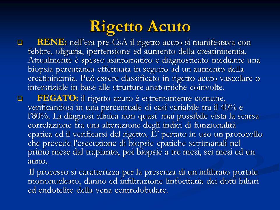 Rigetto Acuto  RENE: nell'era pre-CsA il rigetto acuto si manifestava con febbre, oliguria, ipertensione ed aumento della creatininemia.