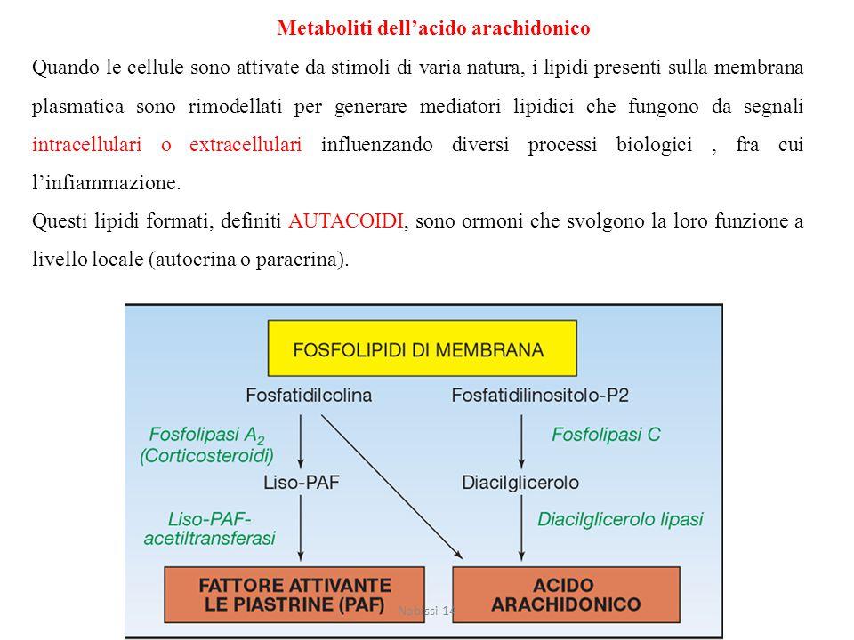 Metaboliti dell'acido arachidonico Quando le cellule sono attivate da stimoli di varia natura, i lipidi presenti sulla membrana plasmatica sono rimodellati per generare mediatori lipidici che fungono da segnali intracellulari o extracellulari influenzando diversi processi biologici, fra cui l'infiammazione.