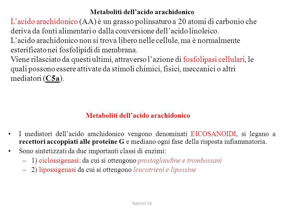 Metaboliti dell'acido arachidonico Quando le cellule sono attivate da stimoli di varia natura, i lipidi presenti sulla membrana plasmatica sono rimode