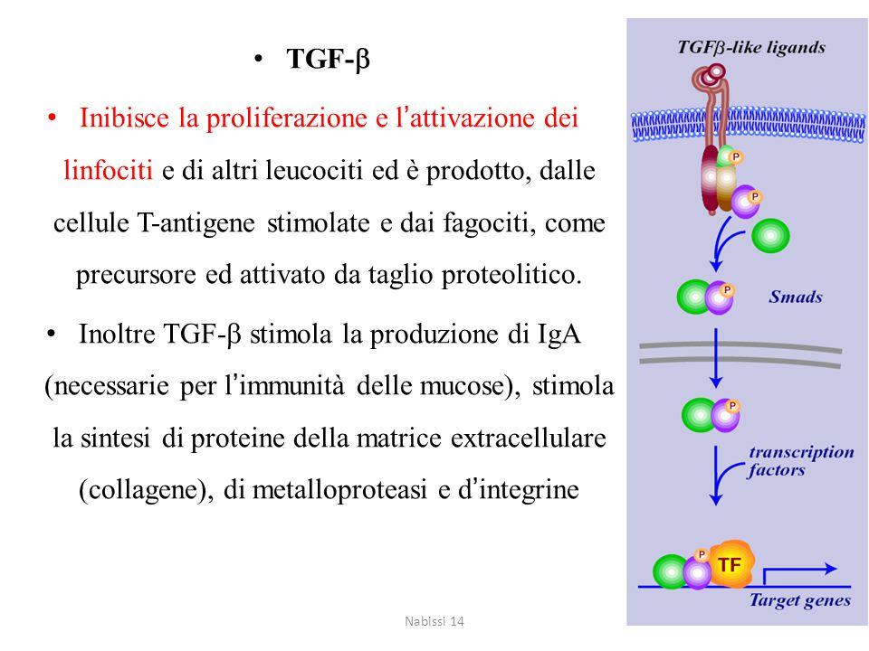 Interleuchina 10 (IL-10) Inibisce l'azione dei macrofagi attivati, controllando cosi' la risposta infiammatoria cellula-mediata Inibisce la produzione