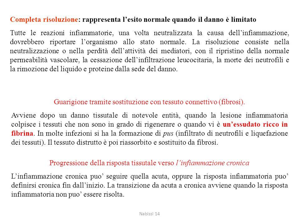 Esiti dell'infiammazione acuta 1)Completa risoluzione: rappresenta l'esito normale quando il danno è limitato 2)Guarigione tramite sostituzione con te