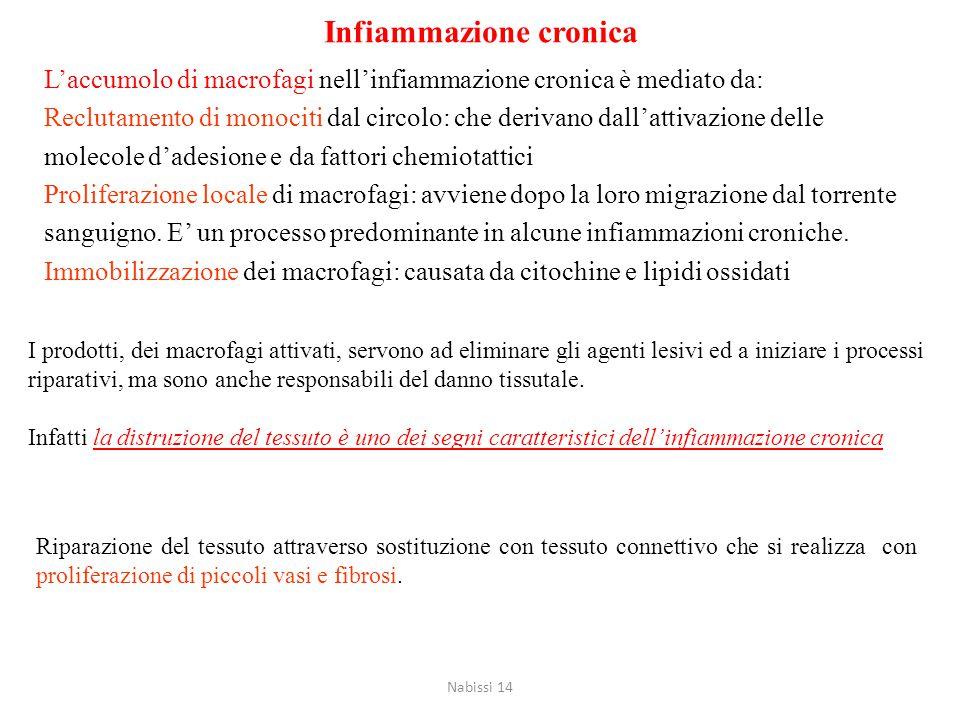 Cause dell'infiammazione cronica Infezioni persistenti: agenti virali, batterici o funginei che sono dotati di bassa tossicità ed evocano una risposta immunitaria detta ipersensibiltà ritardata.