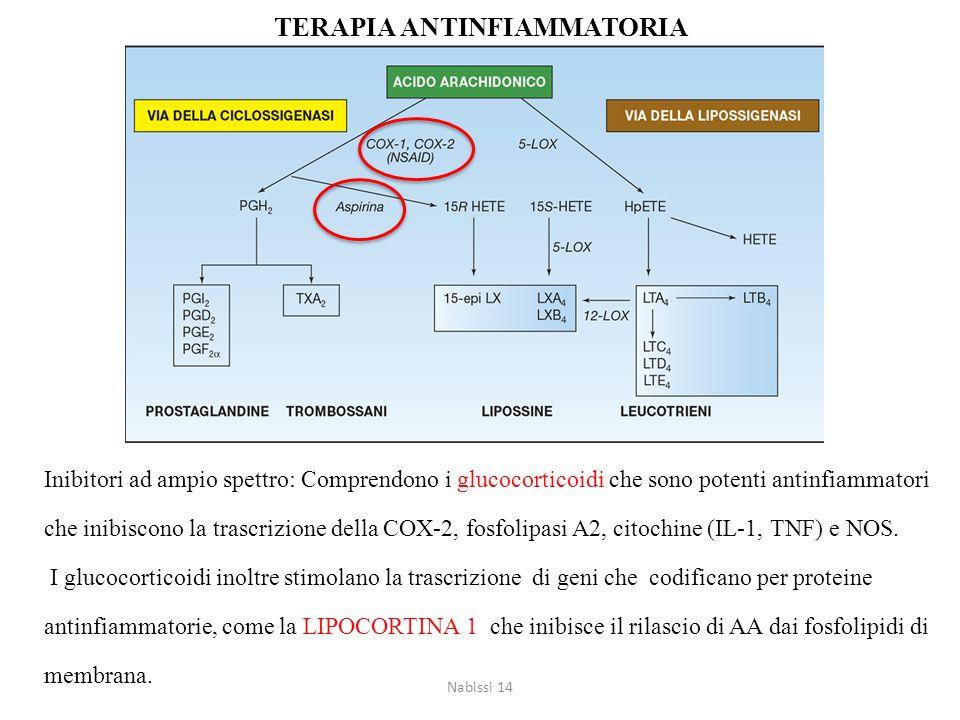 Inibitori ad ampio spettro: Comprendono i glucocorticoidi che sono potenti antinfiammatori che inibiscono la trascrizione della COX-2, fosfolipasi A2, citochine (IL-1, TNF) e NOS.