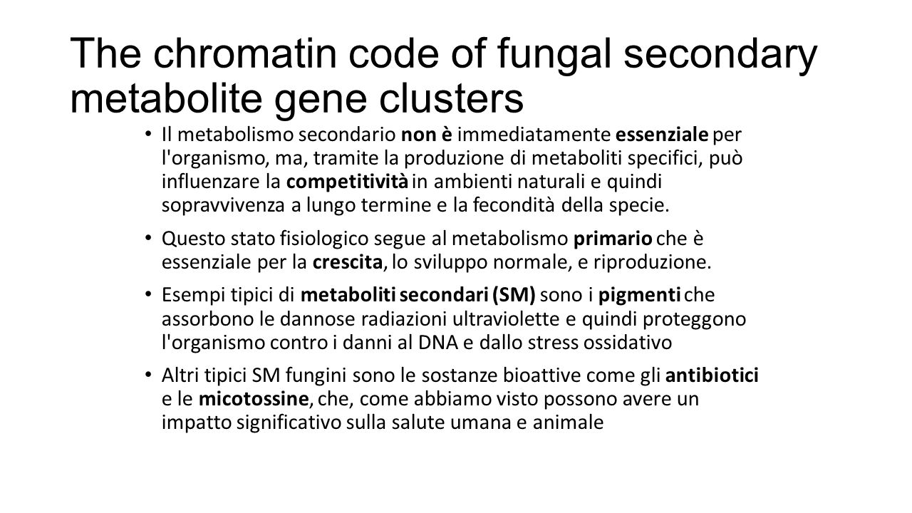 The chromatin code of fungal secondary metabolite gene clusters Il metabolismo secondario non è immediatamente essenziale per l'organismo, ma, tramite