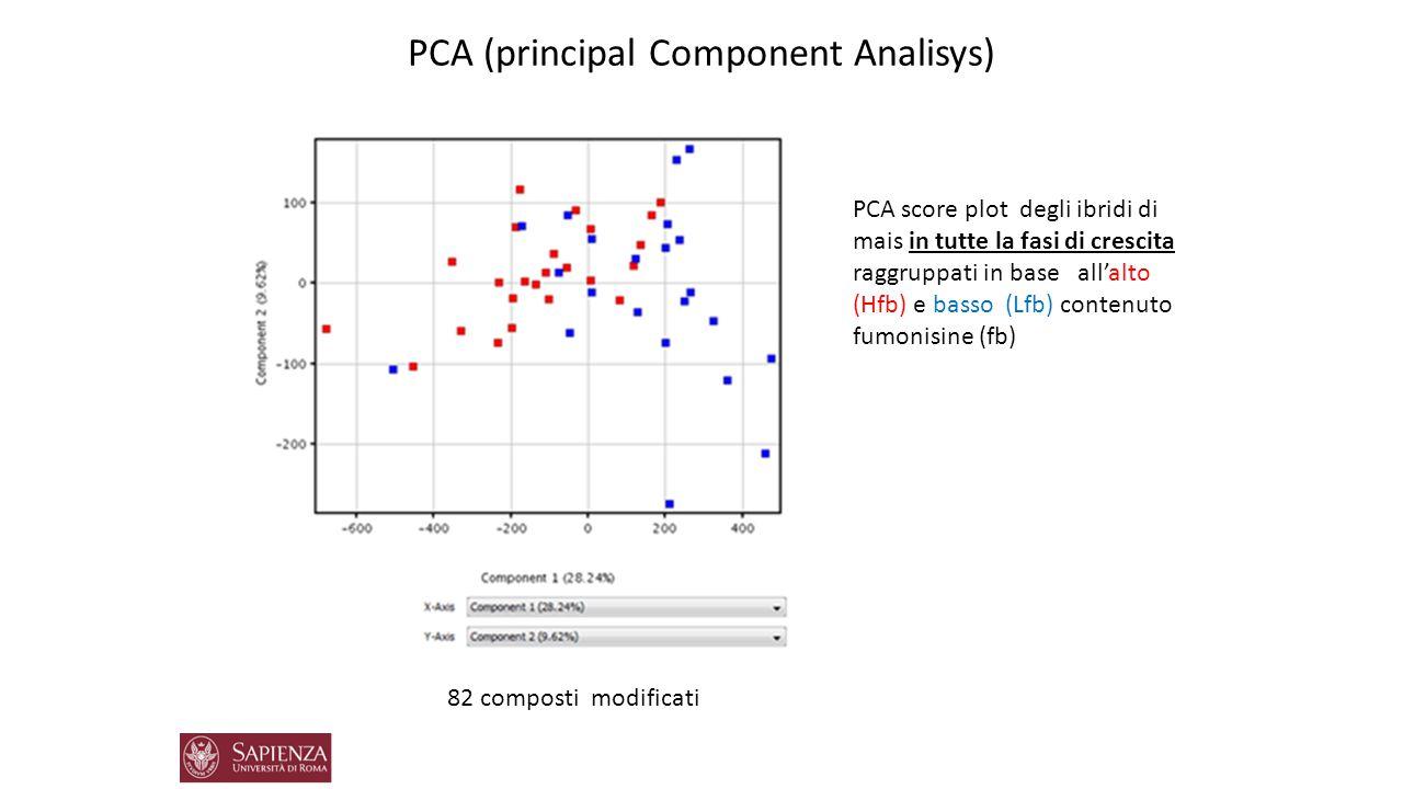 Volcano plot associato a Student's t test Up regolata: 9-HODE e Sfingolipidi Volcano plot degli ibridi di mais in tutte la fasi di crescita raggruppati in base all'alto (Hfb) e basso (Lfb) contenuto fumonisine (fb) 82 composti modificati