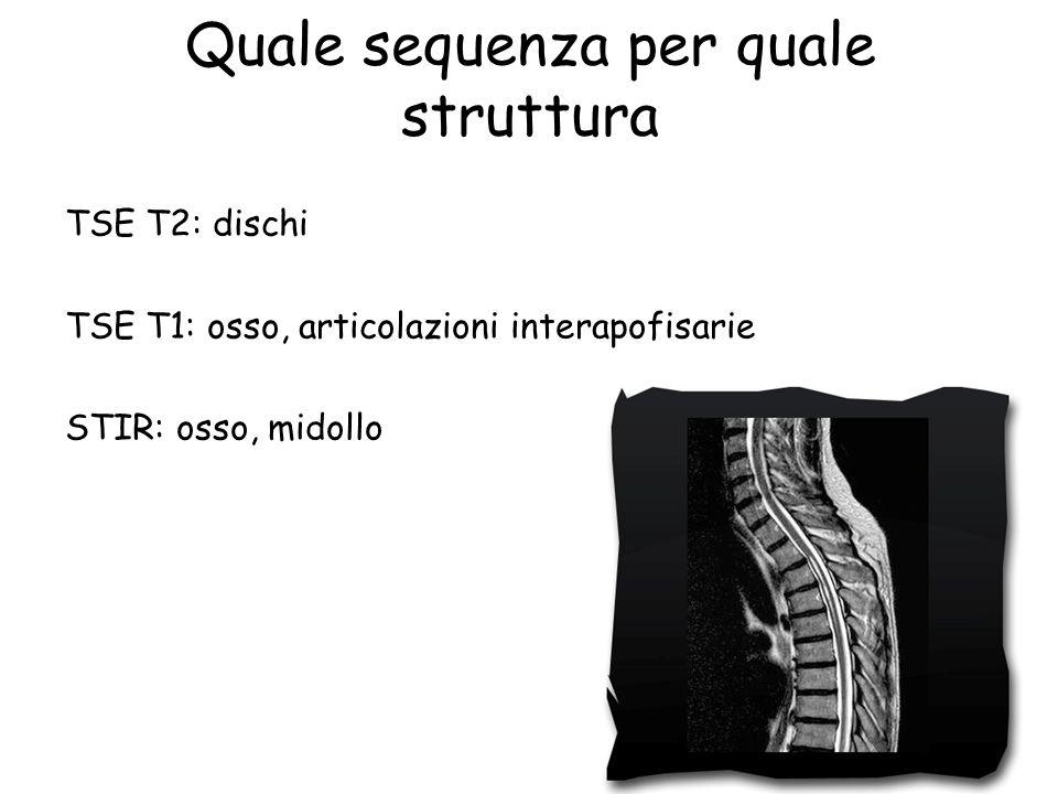 Quale sequenza per quale struttura TSE T2: dischi TSE T1: osso, articolazioni interapofisarie STIR: osso, midollo