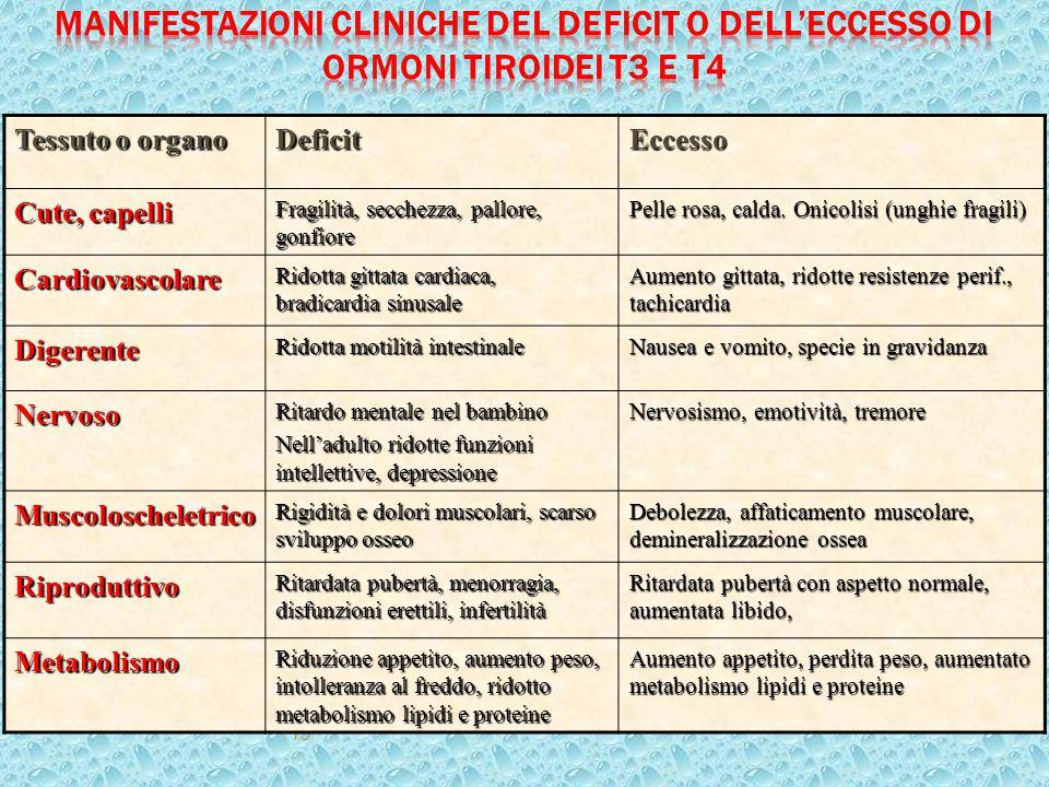 15 Tessuto o organo DeficitEccesso Cute, capelli Fragilità, secchezza, pallore, gonfiore Pelle rosa, calda. Onicolisi (unghie fragili) Cardiovascolare