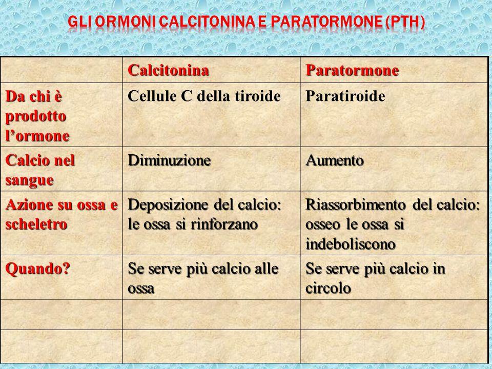 16CalcitoninaParatormone Da chi è prodotto l'ormone Cellule C della tiroideParatiroide Calcio nel sangue DiminuzioneAumento Azione su ossa e scheletro