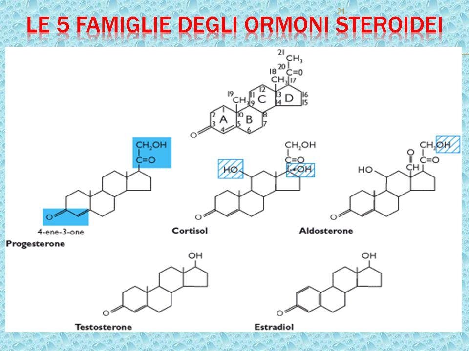 22 Nello schema delle formule le aree in blu indicano strutture indispensabili per l'attività progestinica.