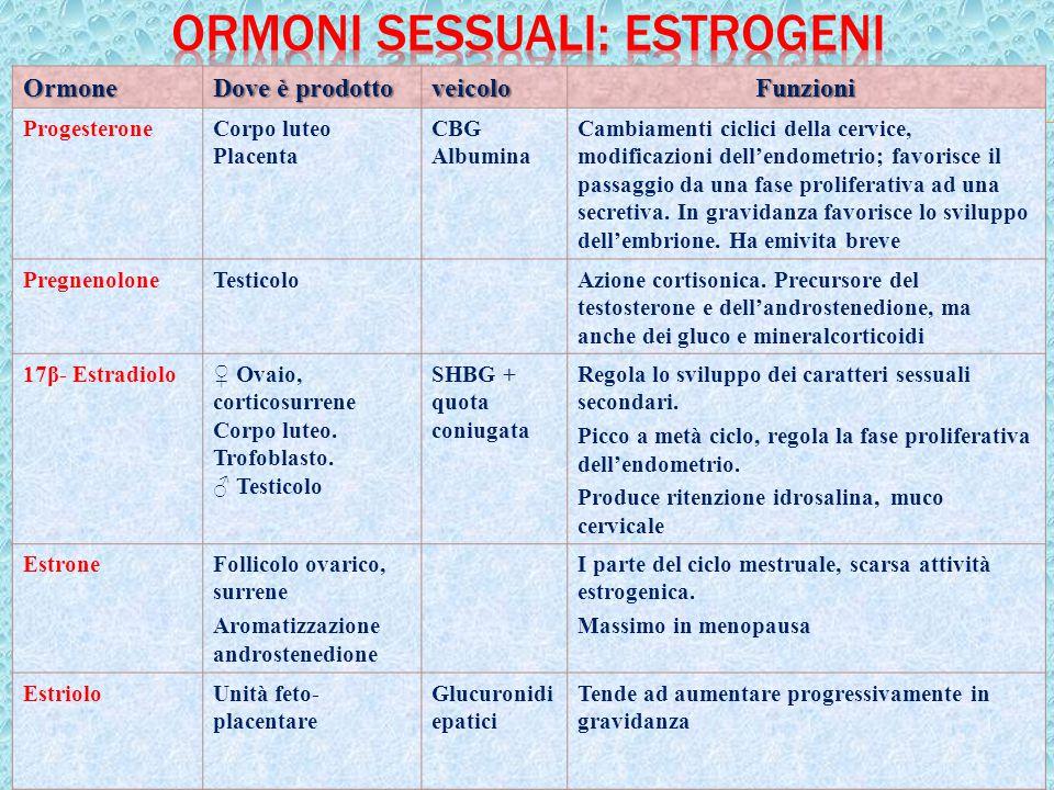 24Ormone Dove è prodotto veicoloFunzioni ProgesteroneCorpo luteo Placenta CBG Albumina Cambiamenti ciclici della cervice, modificazioni dell'endometri