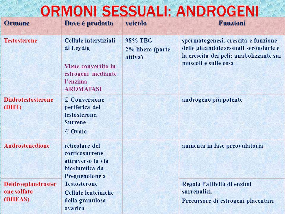 25Ormone Dove è prodotto veicoloFunzioni TestosteroneCellule interstiziali di Leydig Viene convertito in estrogeni mediante l'enzima AROMATASI 98% TBG
