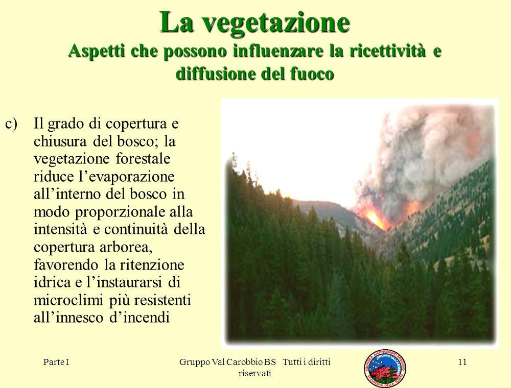 Parte IGruppo Val Carobbio BS Tutti i diritti riservati 11 La vegetazione Aspetti che possono influenzare la ricettività e diffusione del fuoco c)Il g