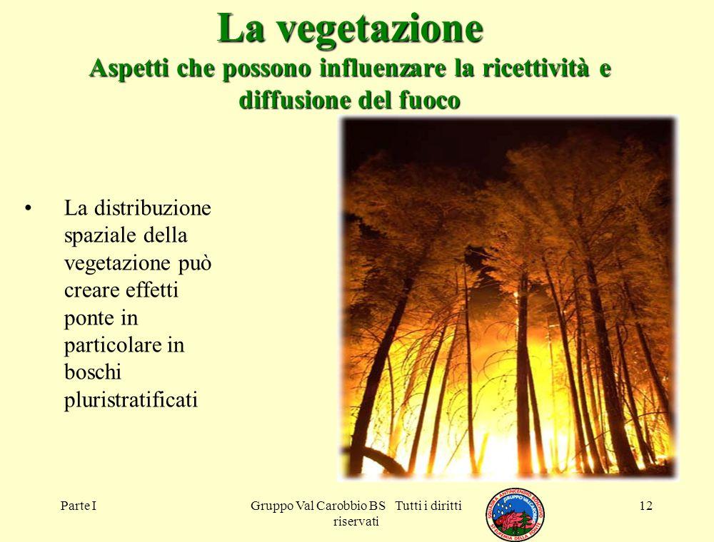 Parte IGruppo Val Carobbio BS Tutti i diritti riservati 12 La vegetazione Aspetti che possono influenzare la ricettività e diffusione del fuoco La dis