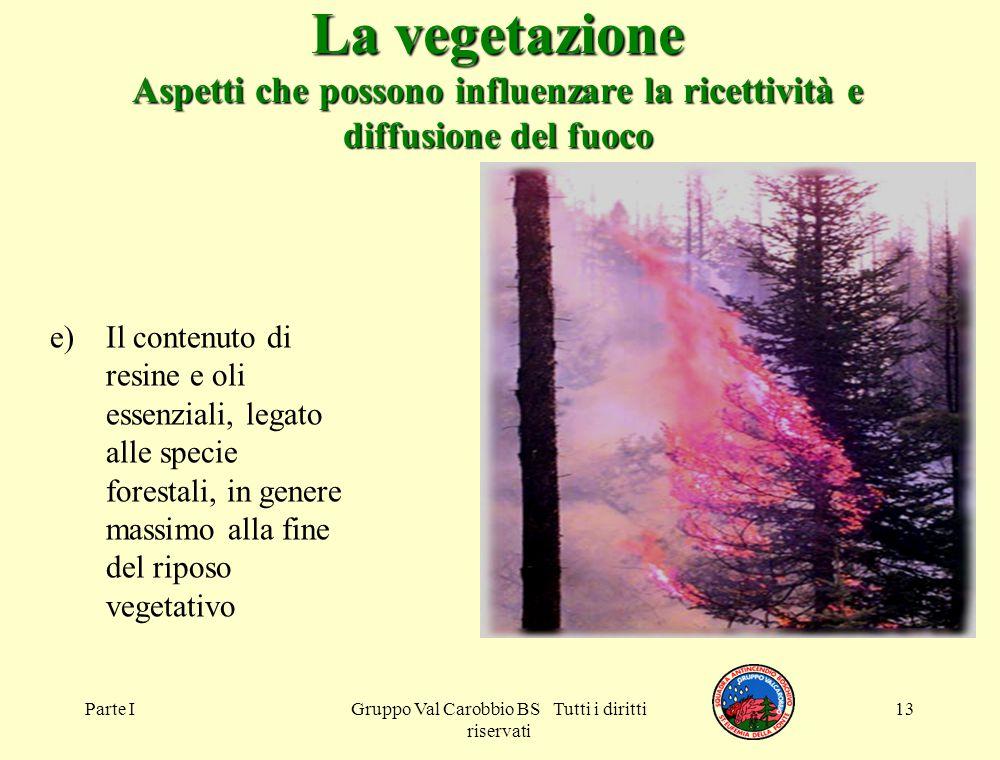 Parte IGruppo Val Carobbio BS Tutti i diritti riservati 13 La vegetazione Aspetti che possono influenzare la ricettività e diffusione del fuoco e)Il c
