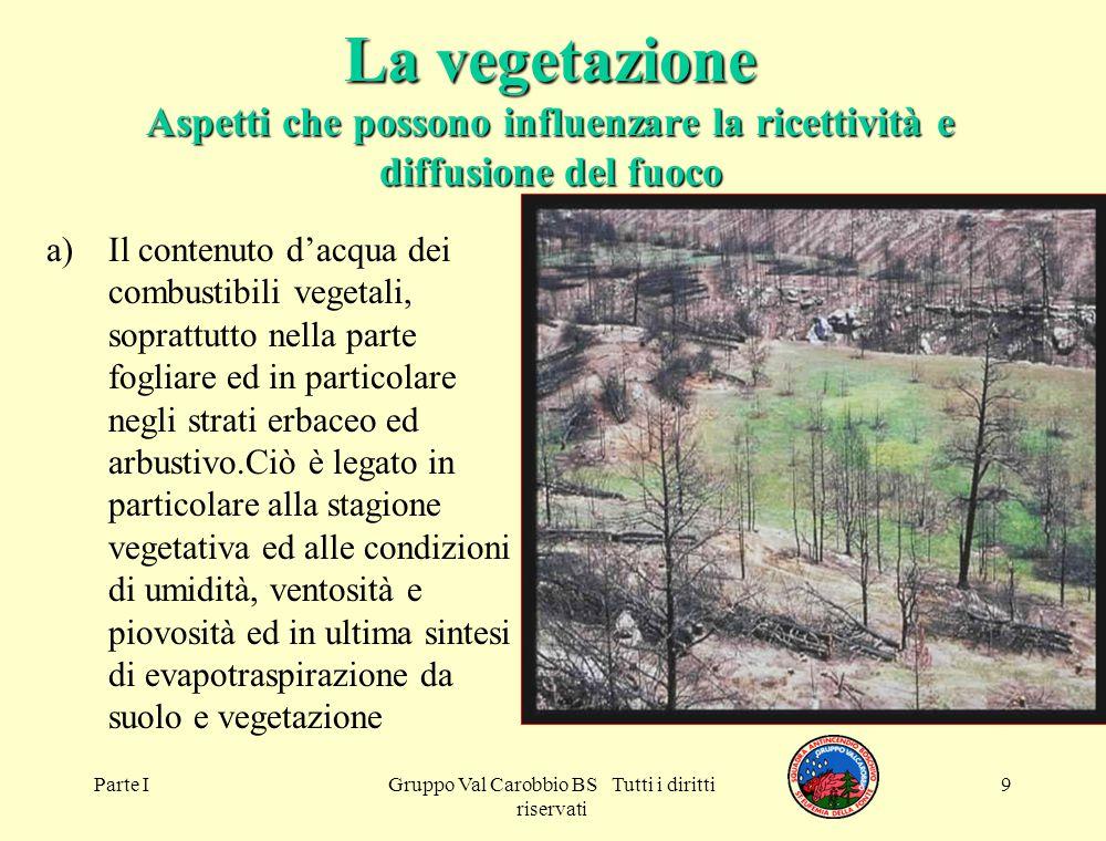 Parte IGruppo Val Carobbio BS Tutti i diritti riservati 9 La vegetazione Aspetti che possono influenzare la ricettività e diffusione del fuoco a)Il co