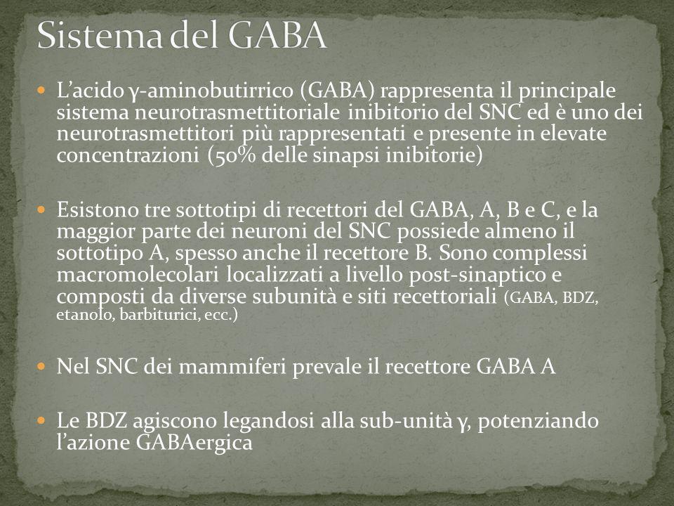 L'acido γ-aminobutirrico (GABA) rappresenta il principale sistema neurotrasmettitoriale inibitorio del SNC ed è uno dei neurotrasmettitori più rappresentati e presente in elevate concentrazioni (50% delle sinapsi inibitorie) Esistono tre sottotipi di recettori del GABA, A, B e C, e la maggior parte dei neuroni del SNC possiede almeno il sottotipo A, spesso anche il recettore B.