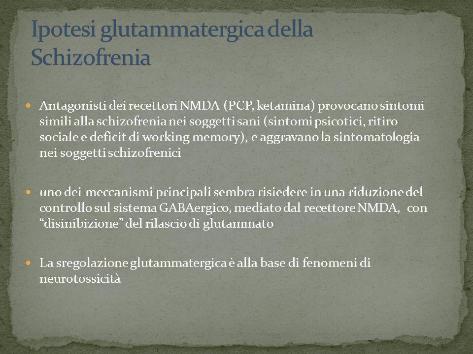 Antagonisti dei recettori NMDA (PCP, ketamina) provocano sintomi simili alla schizofrenia nei soggetti sani (sintomi psicotici, ritiro sociale e deficit di working memory), e aggravano la sintomatologia nei soggetti schizofrenici uno dei meccanismi principali sembra risiedere in una riduzione del controllo sul sistema GABAergico, mediato dal recettore NMDA, con disinibizione del rilascio di glutammato La sregolazione glutammatergica è alla base di fenomeni di neurotossicità