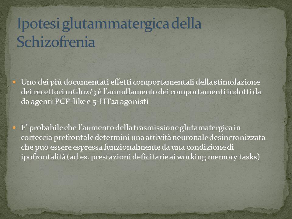 Uno dei più documentati effetti comportamentali della stimolazione dei recettori mGlu2/3 è l'annullamento dei comportamenti indotti da da agenti PCP-like e 5-HT2a agonisti E' probabile che l'aumento della trasmissione glutamatergica in corteccia prefrontale determini una attività neuronale desincronizzata che può essere espressa funzionalmente da una condizione di ipofrontalità (ad es.