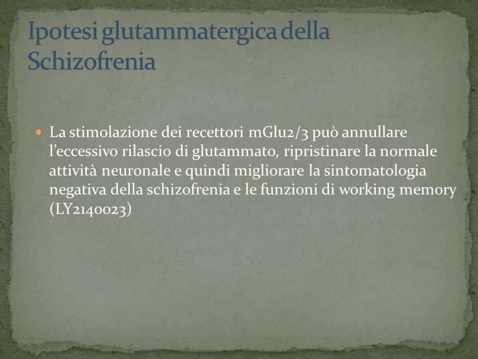 La stimolazione dei recettori mGlu2/3 può annullare l'eccessivo rilascio di glutammato, ripristinare la normale attività neuronale e quindi migliorare la sintomatologia negativa della schizofrenia e le funzioni di working memory (LY2140023)
