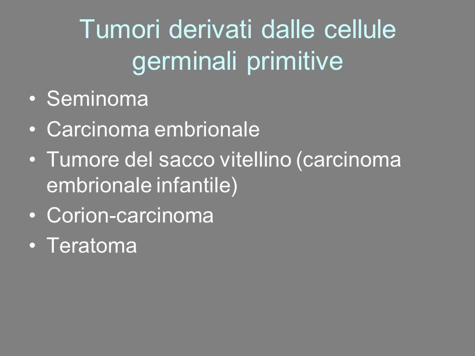 Tumori derivati dalle cellule germinali primitive Seminoma Carcinoma embrionale Tumore del sacco vitellino (carcinoma embrionale infantile) Corion-car