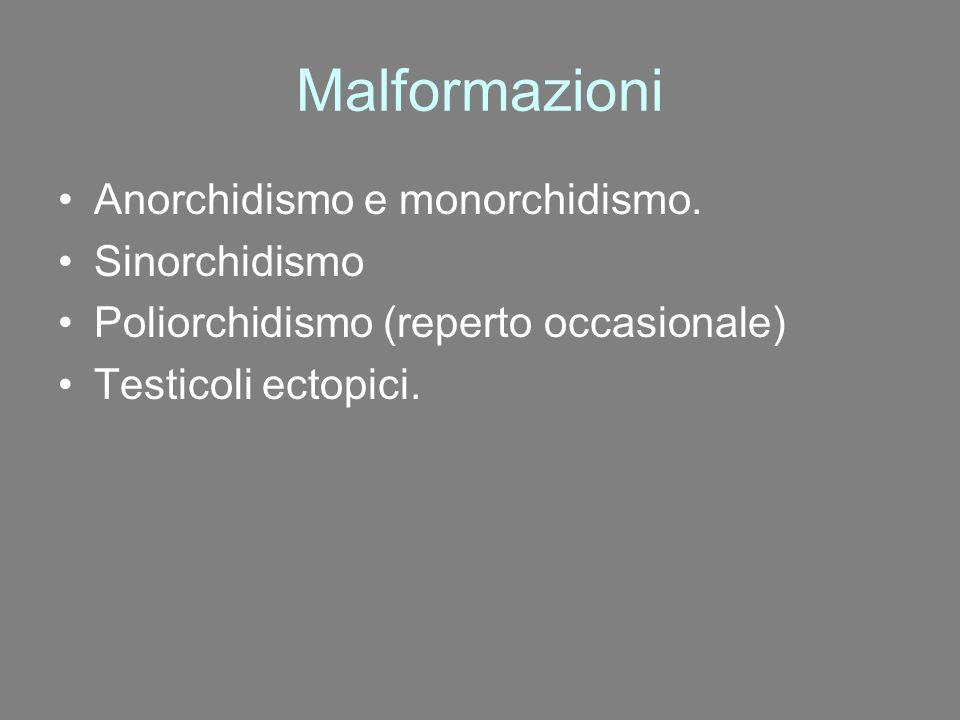 Malformazioni Anorchidismo e monorchidismo. Sinorchidismo Poliorchidismo (reperto occasionale) Testicoli ectopici.