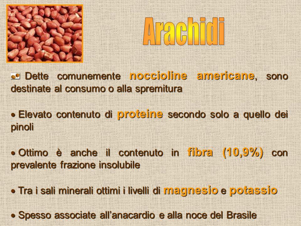 Dette comunemente noccioline americane, sono destinate al consumo o alla spremitura Dette comunemente noccioline americane, sono destinate al consumo
